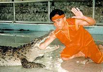 экскурсии в паттайе, крокодиловая ферма