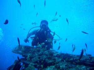 Diver Hilton Cebu
