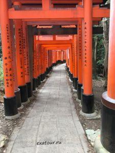 Киото из Иркутска Экзотик Азия Тур